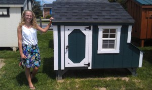 Checking out fancy chicken coops! Anyone have $2000?